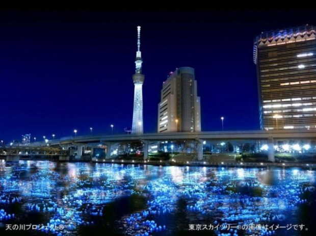 Tokyo Hotaru - 7