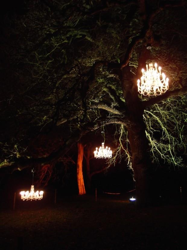 Christmas at Kew - 11