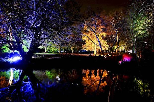 Christmas at Kew - 13