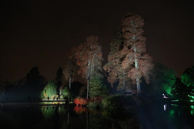 Christmas at Kew - 17
