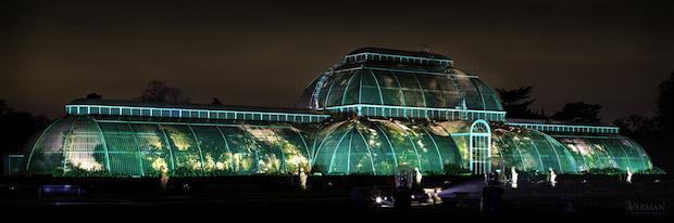 Christmas at Kew - 22