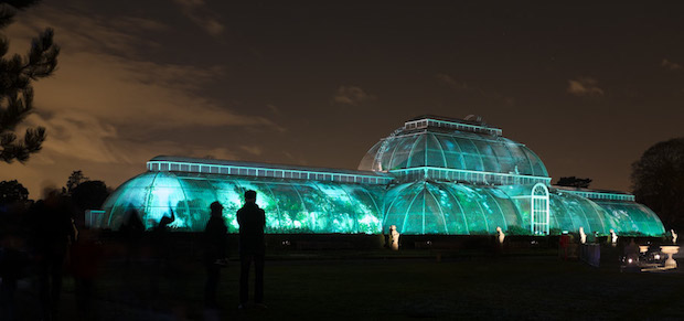 Christmas at Kew - 24