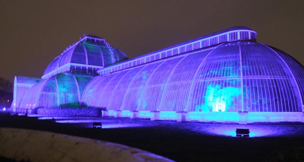 Christmas at Kew - 27