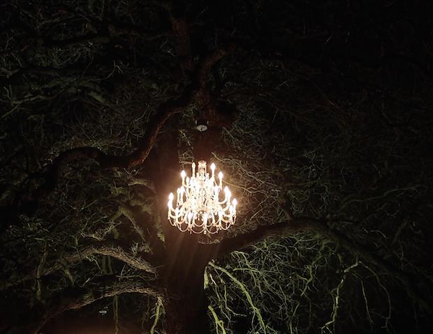 Christmas at Kew - 28