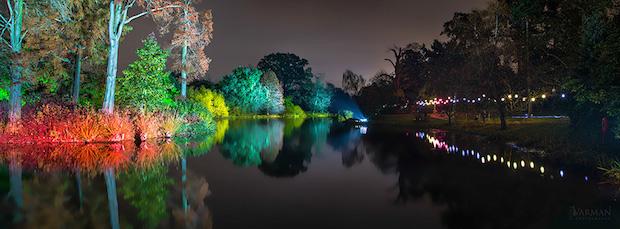 Christmas at Kew - 3