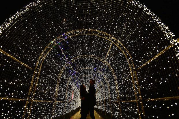Christmas at Kew - 9
