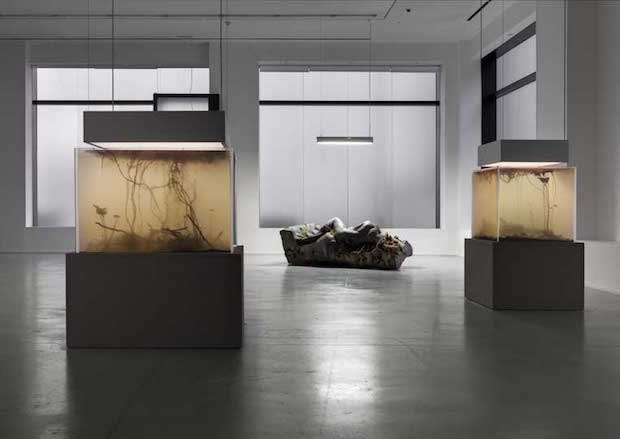 In Border Deep - Pierre Huyghe - 2