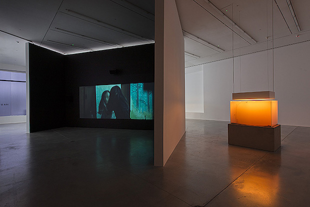 In Border Deep - Pierre Huyghe - 4