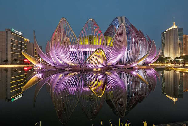 The Lotus  Conference Center – Wujin