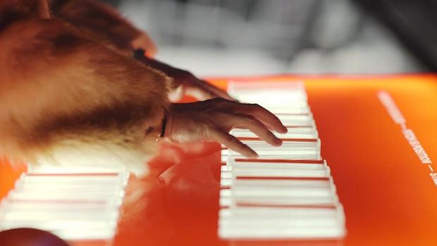 Harpa Light Organ - 3