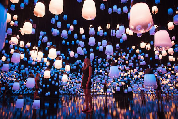 Forest of Resonating Lamps - 4